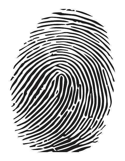 Fingerprint images clipart clip library download 11+ Fingerprint Clipart   ClipartLook clip library download