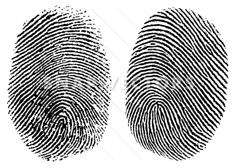 Fingerprint images clipart image transparent download Vector Clipart Fingerprint Set image transparent download