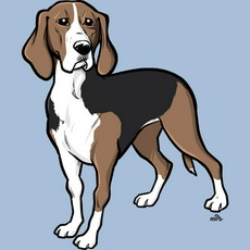 Finnish hound clipart clipart picture black and white download Finnish hound clipart clipart - ClipartFest picture black and white download