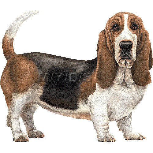Finnish hound clipart clipart graphic free Halden hound clipart - ClipartFest graphic free