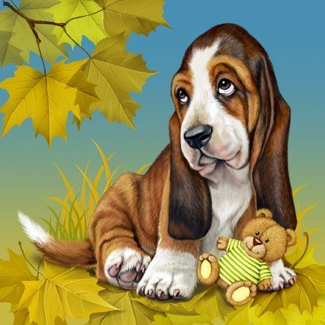 Finnish hound clipart clipart clip art library 10+ images about Basset Hounds on Pinterest   Basset puppies ... clip art library