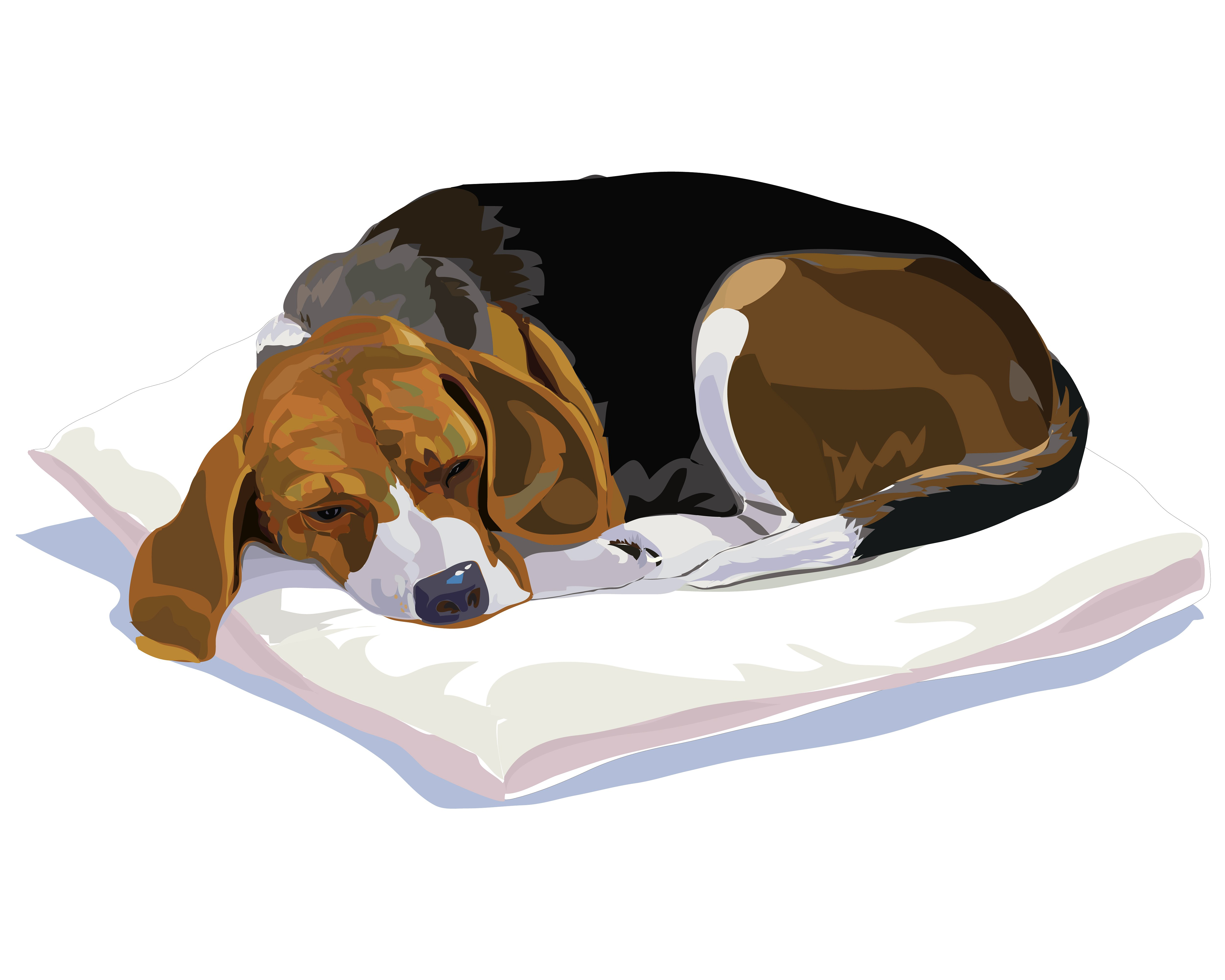 Finnish hound clipart clipart image freeuse stock Resting Beagle ~ Graphics on Creative Market image freeuse stock