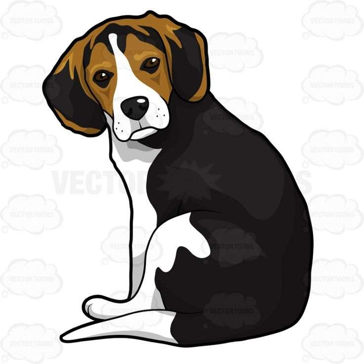 Finnish hound clipart clipart vector library library 17 Best ideas about Black And White Beagle on Pinterest   Shelter ... vector library library