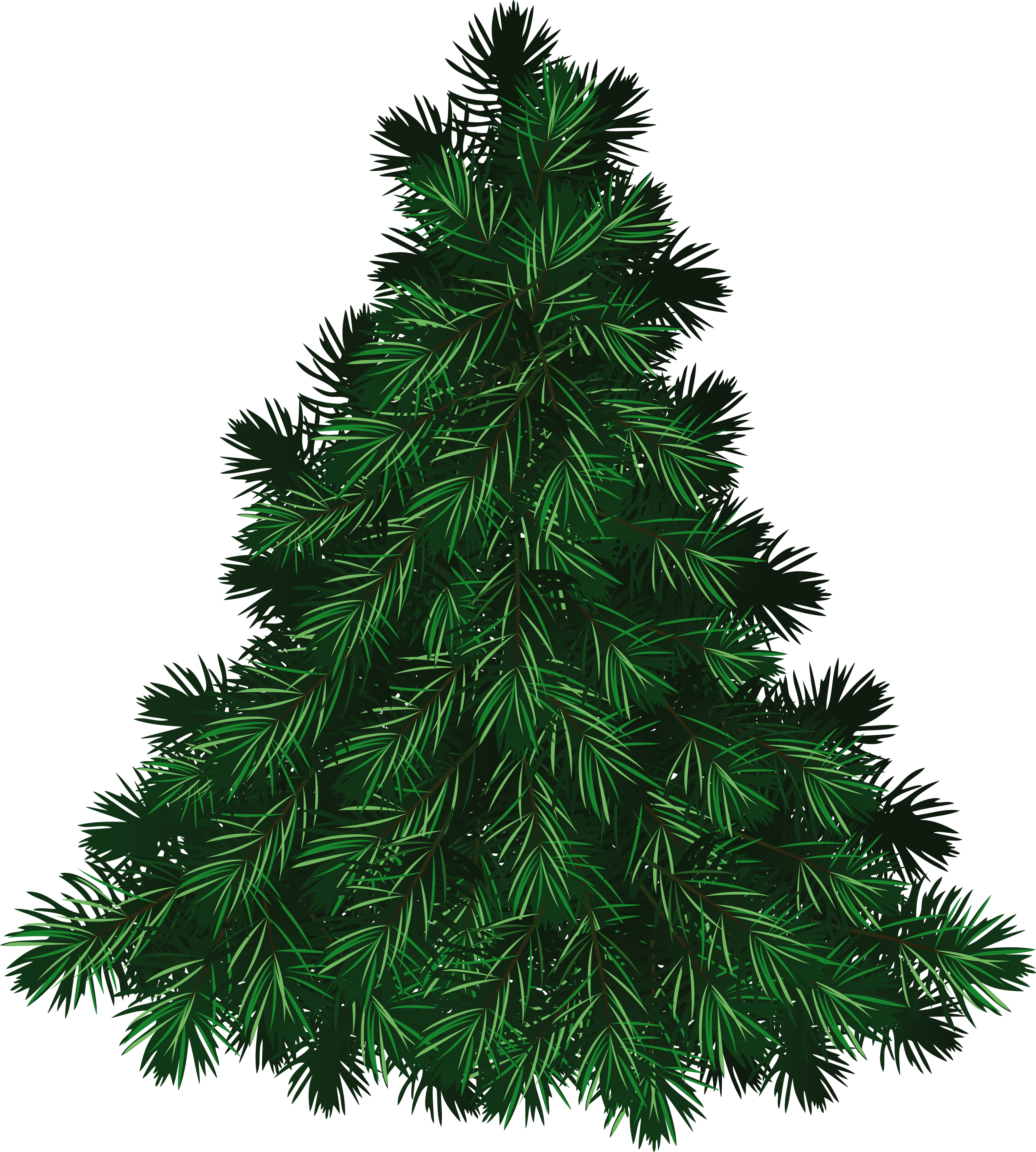 Fir tree clipart picture transparent library Fir Tree PNG Image - PurePNG | Free transparent CC0 PNG Image Library picture transparent library