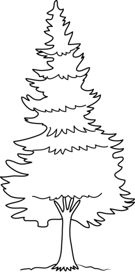 Fir tree clipart black and white free png stock Free Fir Tree Clipart Black And White, Download Free Clip Art, Free ... png stock
