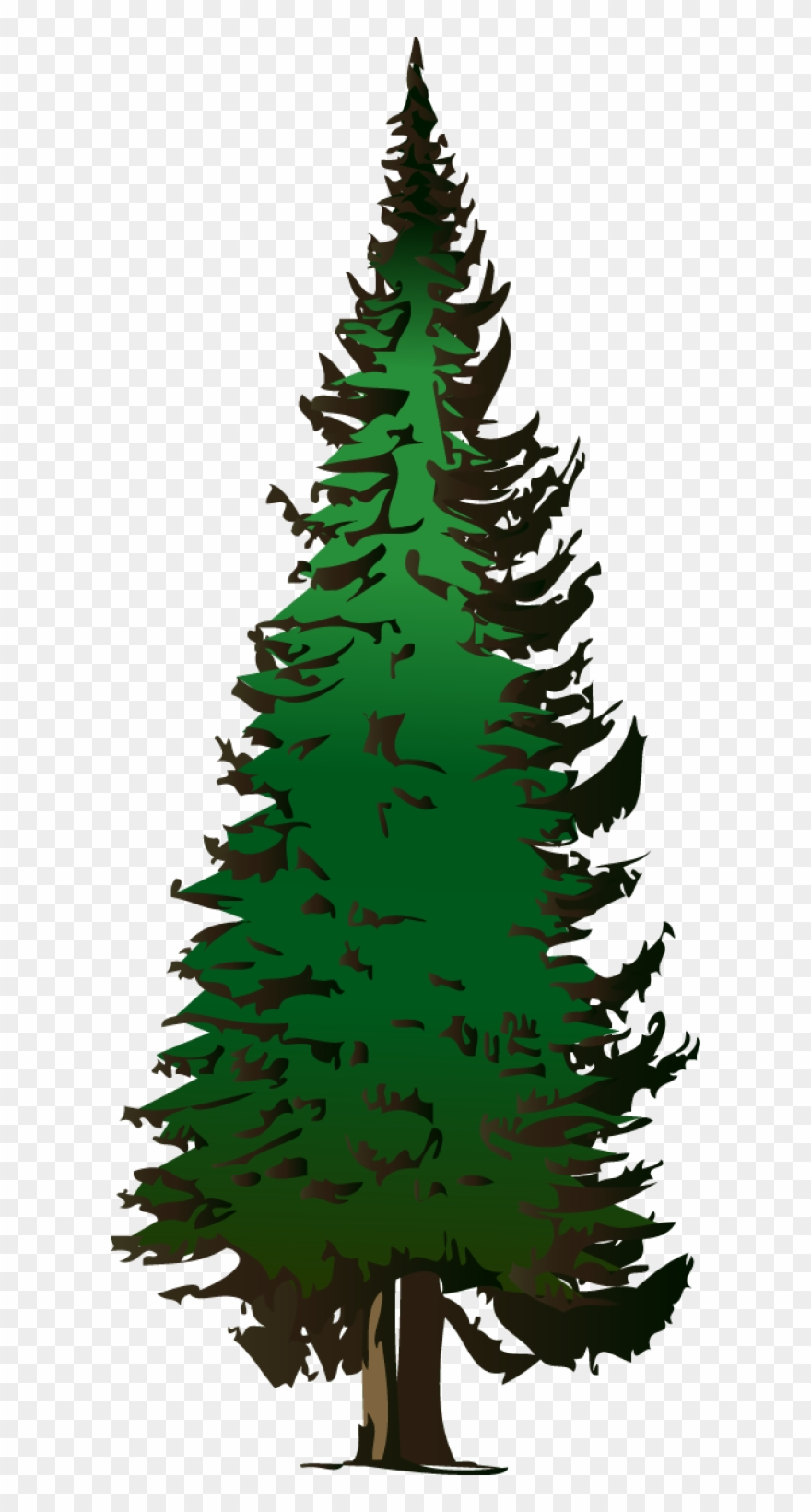 Trees clipart spruce svg transparent stock Pine Tree Vector Free Download - Pine Tree Clipart Png Transparent ... svg transparent stock