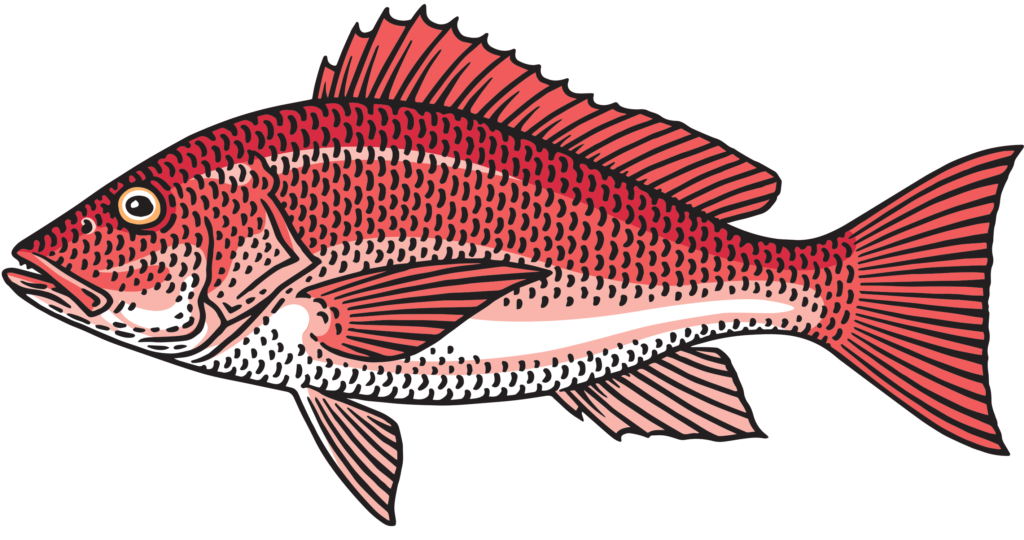Fish you can eat clipart jpg library Local Seafood and Fish: Why it Matters - Local Life jpg library