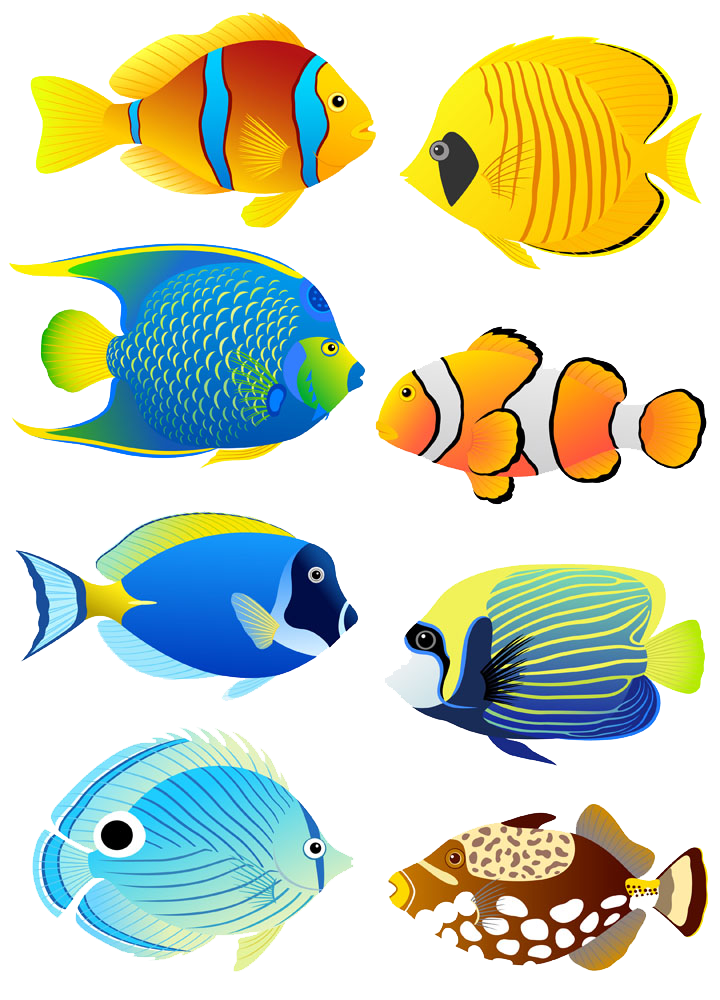 Fish in aquarium clipart. Tropical angelfish clip art