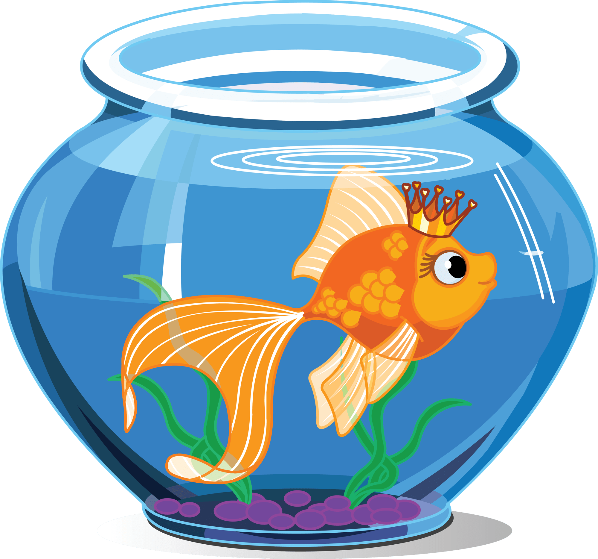 Fish tank transparent clipart. Tanks justin ide