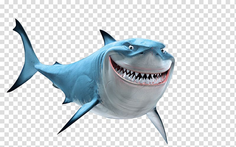 Bruce nemo drawing marlin. Fish are friends not food clipart png