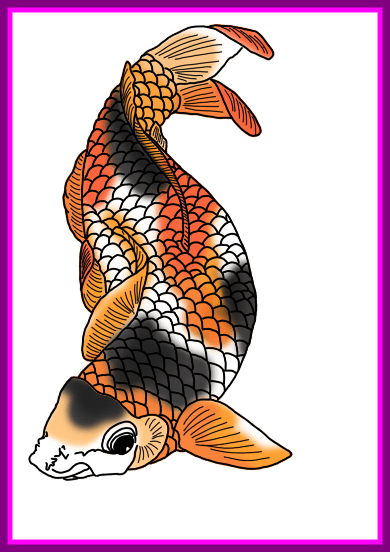 Fish borders clipart picture freeuse download The Best Colorful Koi Fish Drawings Pict Of Png Clipart Black And ... picture freeuse download