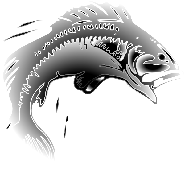 Jumping fish clipart jpg transparent library Jumping Fish Clip Art at Clker.com - vector clip art online, royalty ... jpg transparent library