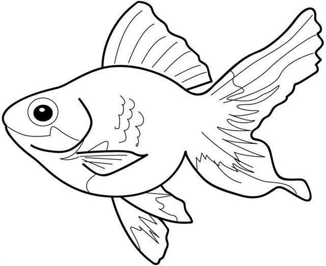 Pictures to color kids. Fish clipart for coloring