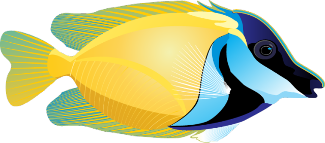 Fish clipart for photoshop banner freeuse library Graphic Design | Fish Pictures | Clip art, Fish clipart, Fish art banner freeuse library