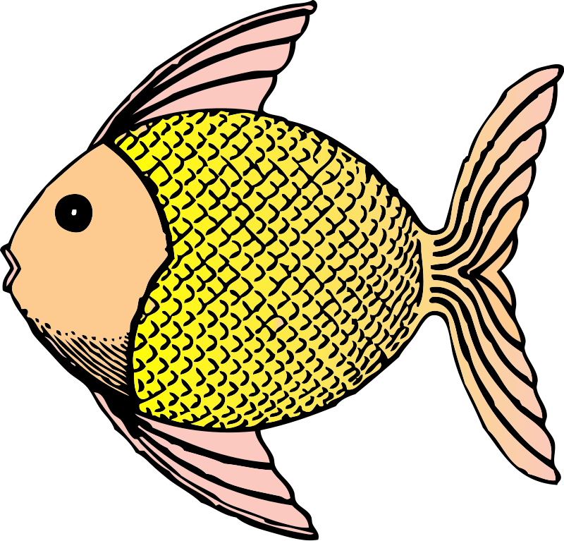 Fish clipart vector jpg transparent stock Free Tropical Rainforest Clipart, Download Free Clip Art, Free Clip ... jpg transparent stock