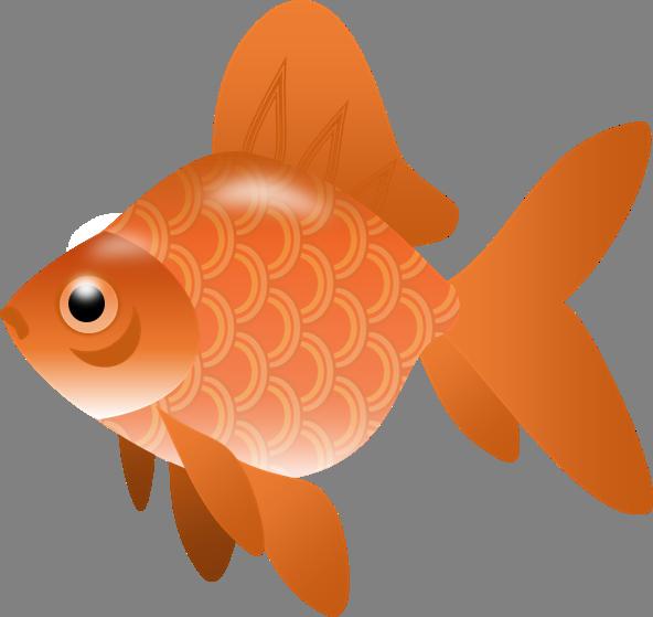 Goldfish fish clipart vector free stock The Top 5 Best Blogs on Goldfish Cracker Clipart vector free stock