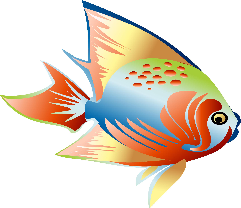 Clip art colorful dream. Fish fin clipart