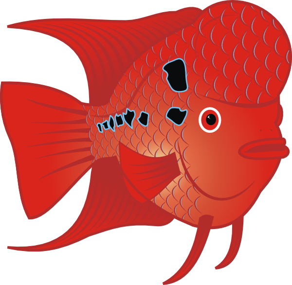 Fish with gills clipart. Red clip art at