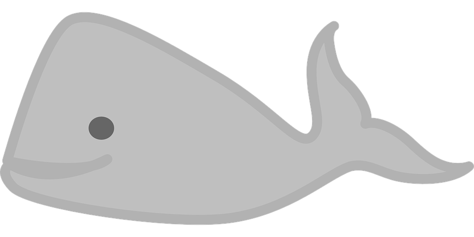 Fish in pond clipart no watermark graphic black and white library Free Image on Pixabay - Whale, Sea, Animal, Water, Ocean | Pinterest graphic black and white library
