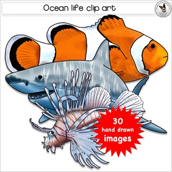 Fish in the sea realistic clipart vector free library Marine, Ocean, Sea, Fish, Underwater and Tidepool Realistic Clip Art vector free library