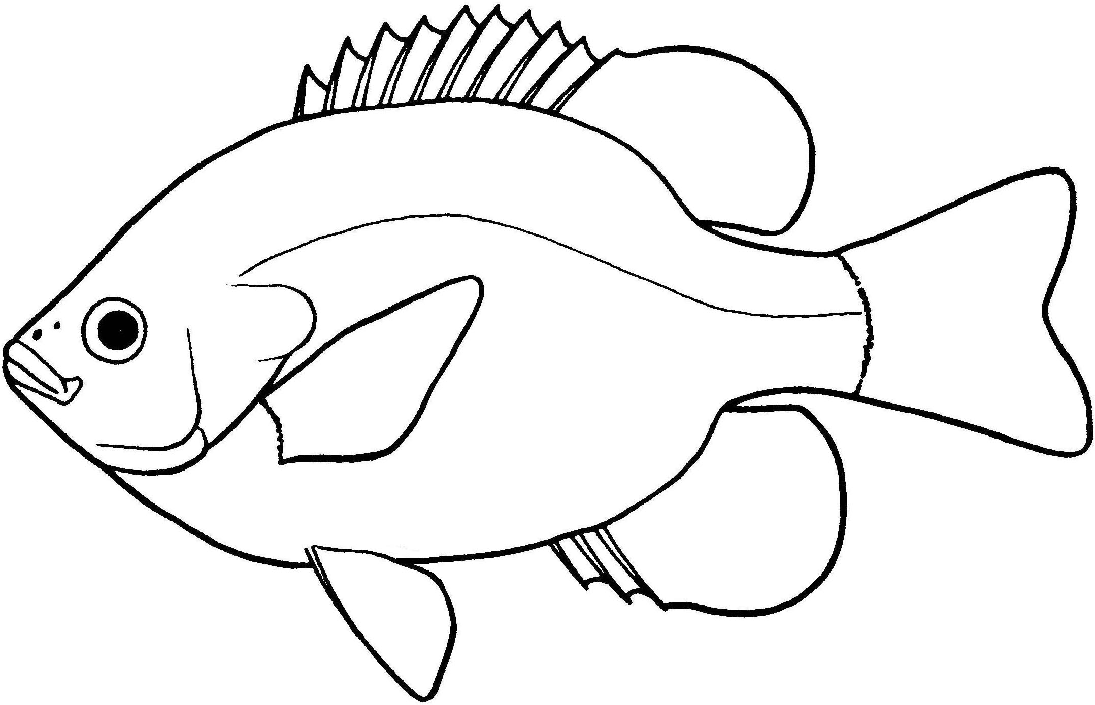 Ichthyology clipart graphic library library Fish black and white fish clipart black and white fresh water ... graphic library library