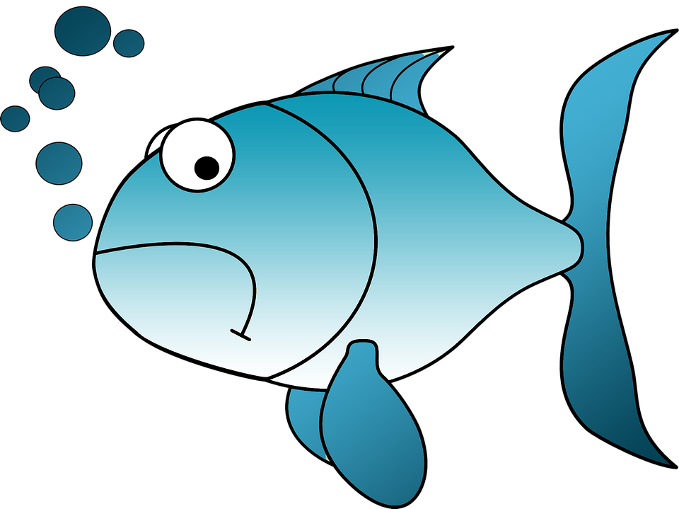 Fish meat clipart png library Red Fish Cliparts#3834363 - Shop of Clipart Library png library