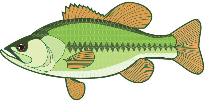 Fish net clipart clip art library library Fish Clipart glitter - Free Clipart on Dumielauxepices.net clip art library library