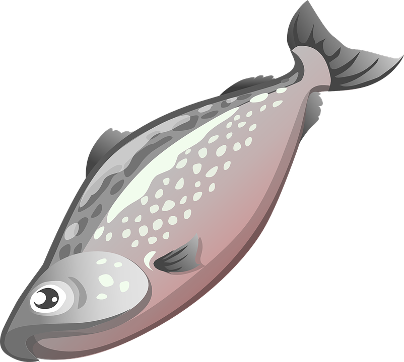 Fish on a plate clipart. Food clipground free vector