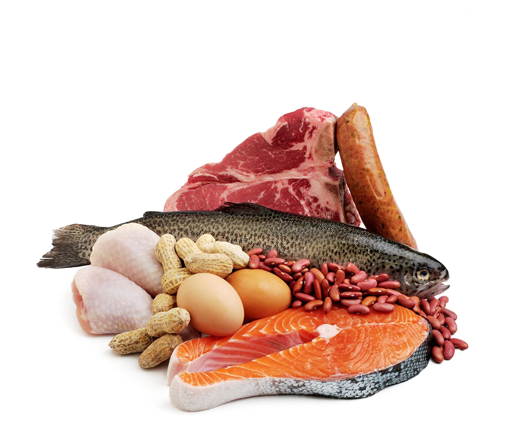 Fish protein clipart vector free download Fish And Meat PNG Transparent Fish And Meat.PNG Images. | PlusPNG vector free download