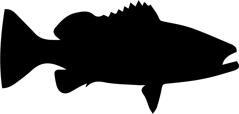 Grouper fish clipart png library Grouper Silhouette at GetDrawings.com   Free for personal use ... png library