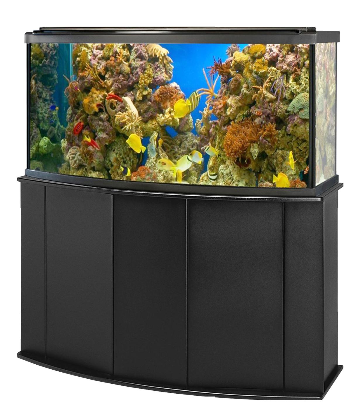 Fish tank coral clipart png black and white library Aquarium Fish Tank PNG Image - PurePNG | Free transparent CC0 PNG ... png black and white library