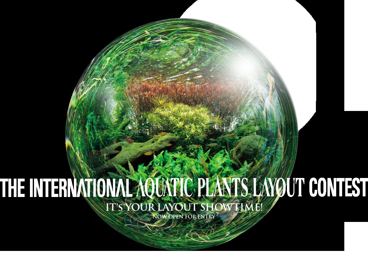 Fish tank plants clipart jpg free library The World's largest contest IAPLC | ADA - NATURE AQUARIUM jpg free library