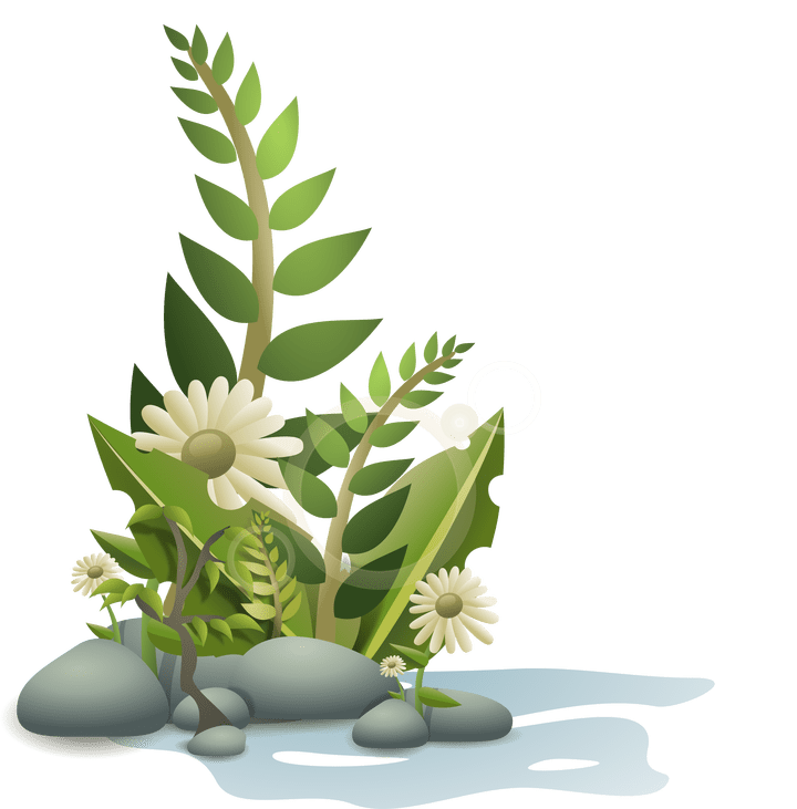 Fish tank plants clipart vector free library Aquarium Plants Clipart | Frameswall.co vector free library