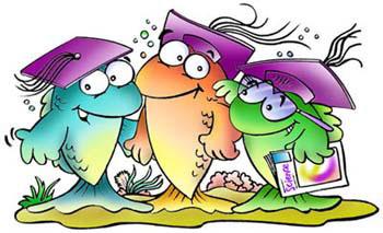 Fish teaching clipart image transparent School Of Fish Illustration | Clipart Panda - Free Clipart Images image transparent