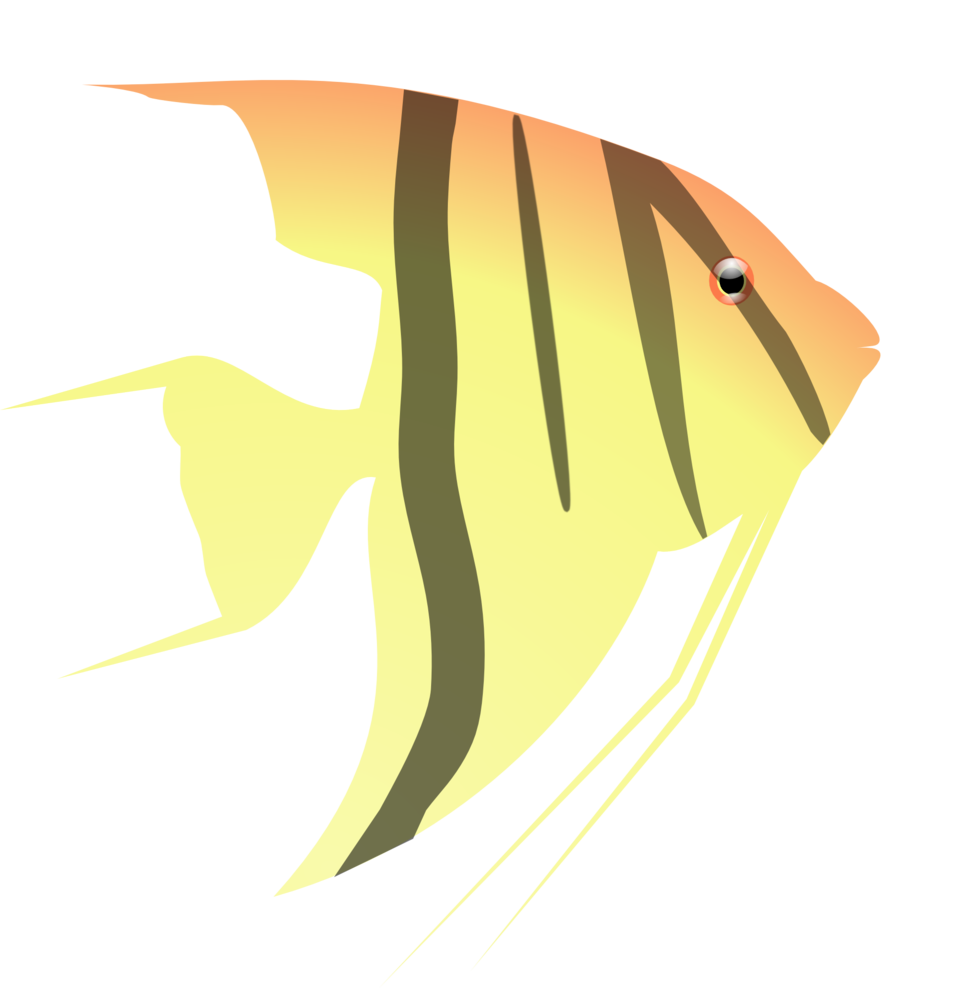 Fish with a question mark in it clipart jpg library Public Domain Clip Art Image   Angel Fish   ID: 13534700414906 ... jpg library