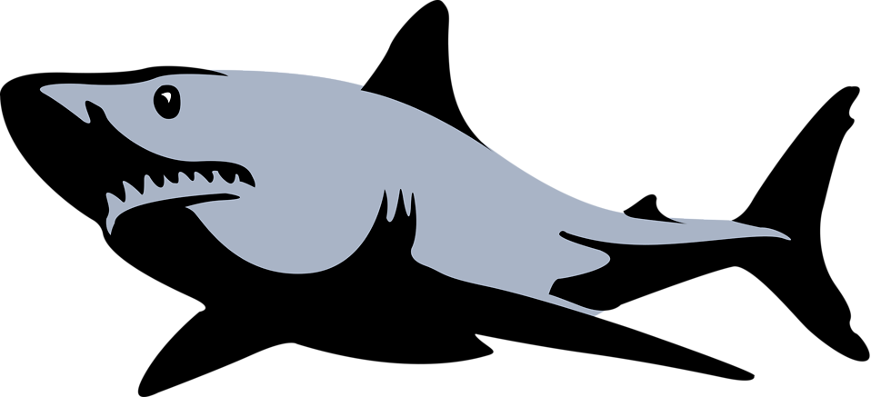 Fish with shark fin clipart image library download Shark | Free Stock Photo | Illustration of a shark | # 16213 image library download