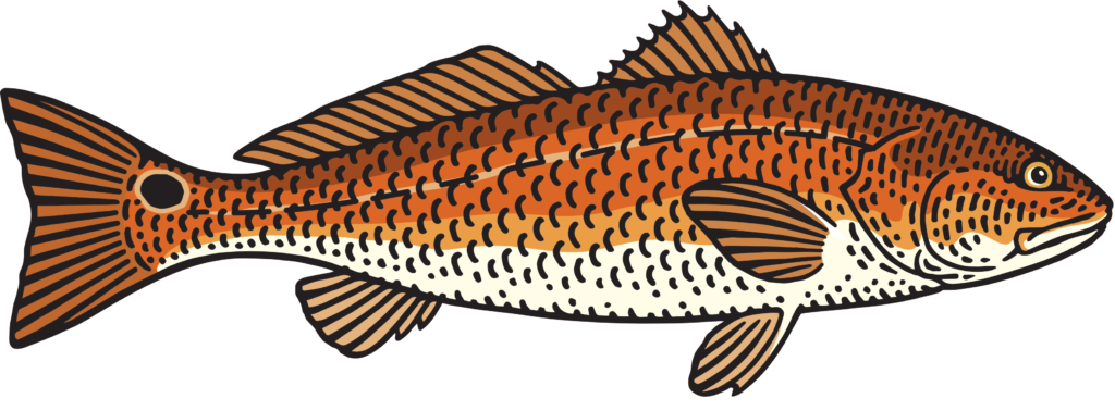 Fish you can eat clipart png freeuse download Local Seafood and Fish: Why it Matters - Local Life png freeuse download