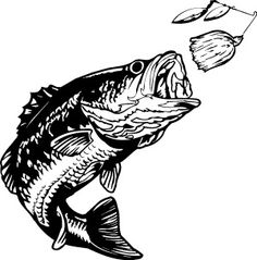 Fishing tournament clipart jpg freeuse download 18 Best FISHING images in 2015   Fish, Clip art, Bass fishing jpg freeuse download