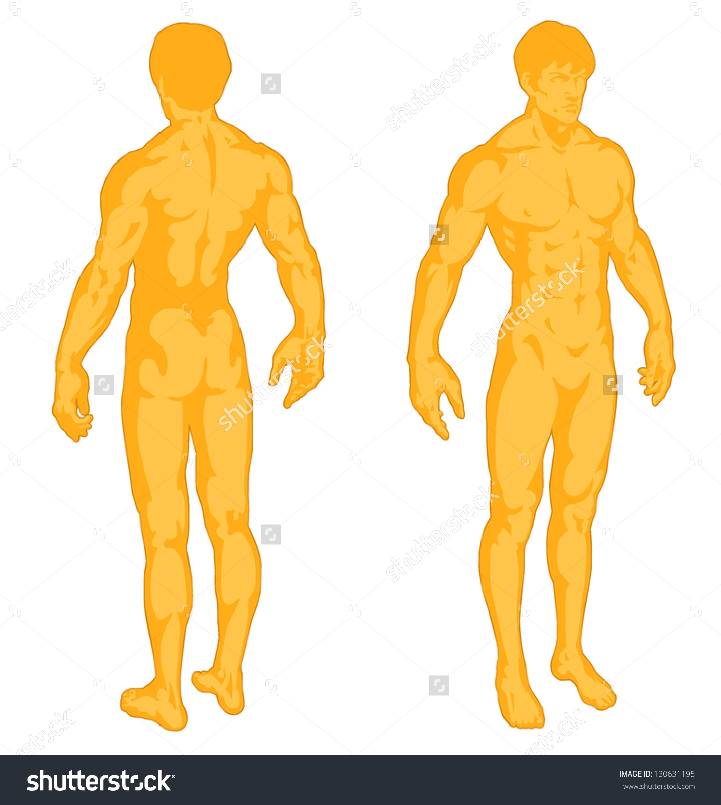 Fit human body clipart picture download Fit human body clipart - ClipartFest picture download
