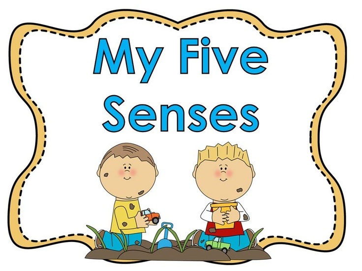 Five senses clipart see. Free cliparts download clip