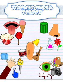 Sight taste touch smell. Five senses clipart images