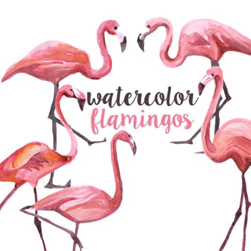 Flamingo border clipart. Free download clip art