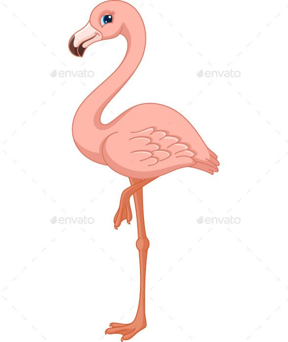 Flamingo cartoon clipart. Pink cs animal bird