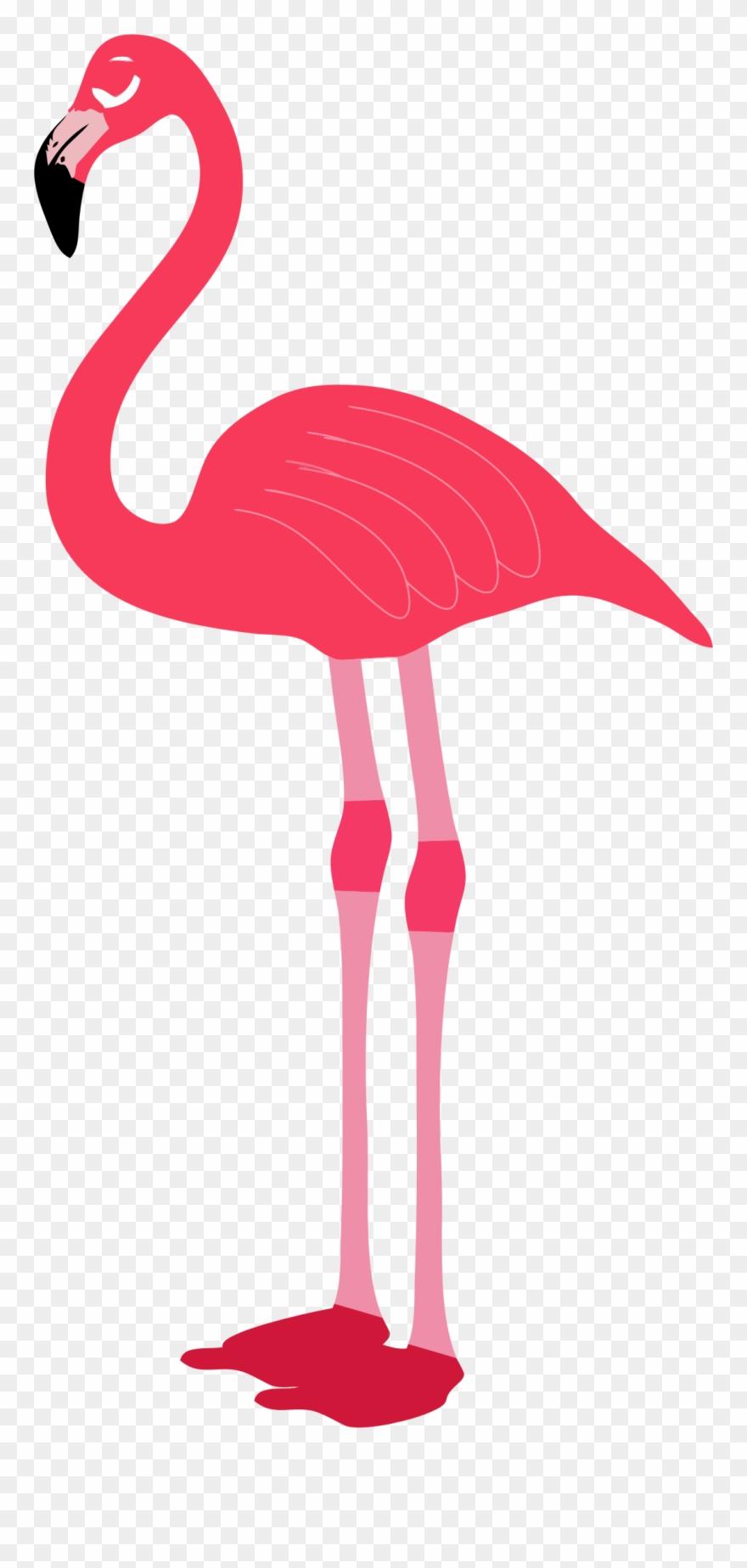 Flamingo clipart transparent background clip art library stock Clipart Flamingo Clipartix - Transparent Background Flamingo Png ... clip art library stock
