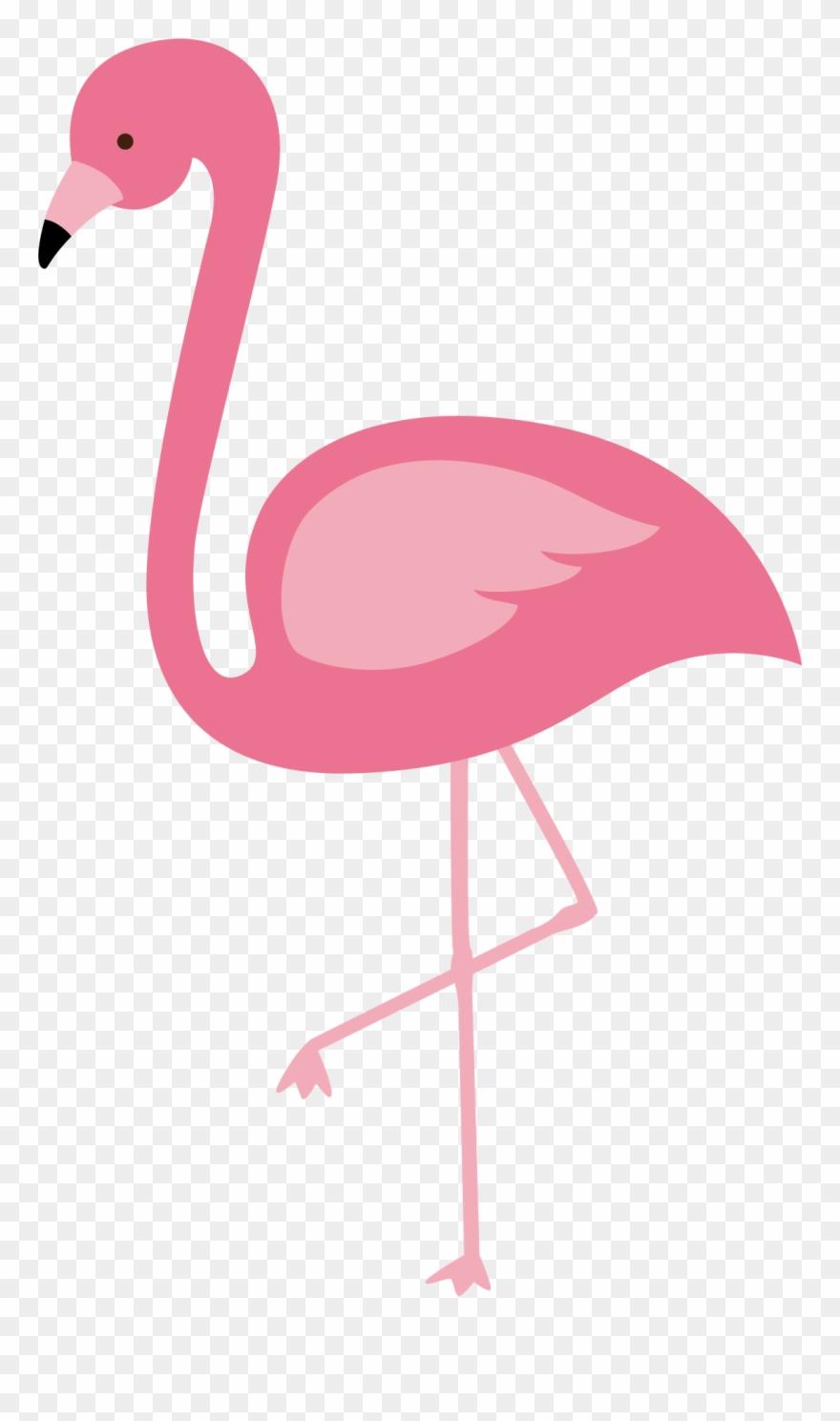 Flamingo clipart transparent background clip art transparent download Flamingo Clipart Pink Flamingo - Vector Flamingo Png Transparent Png ... clip art transparent download