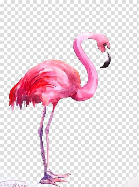 Flamingo watercolor clipart banner transparent download Flamingo Watercolor painting, Flamingos, pink flamingo illustration ... banner transparent download