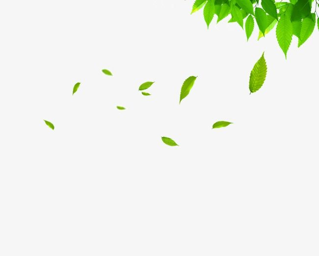 Floating vector clipart royalty free Floating Leaves, Leaf Clipart, Spring, Green Leaves PNG and Vector ... royalty free