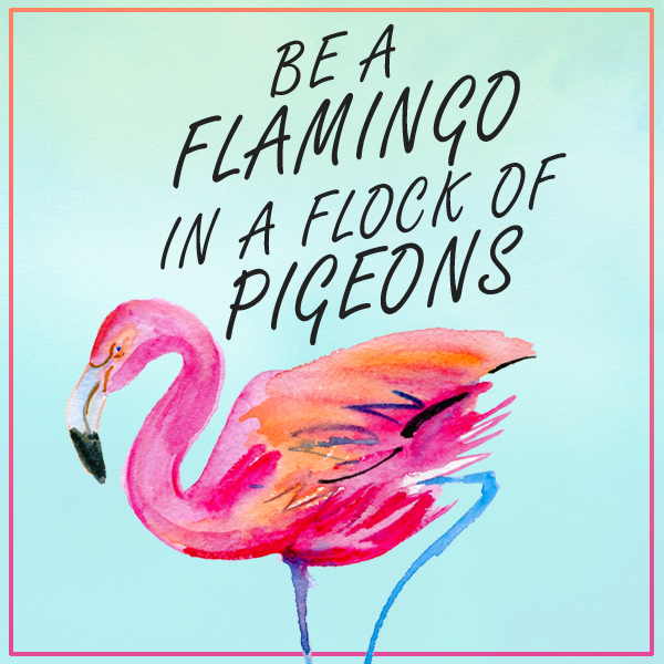 Flock of pigeons and one flamingo clipart. Be a in quote