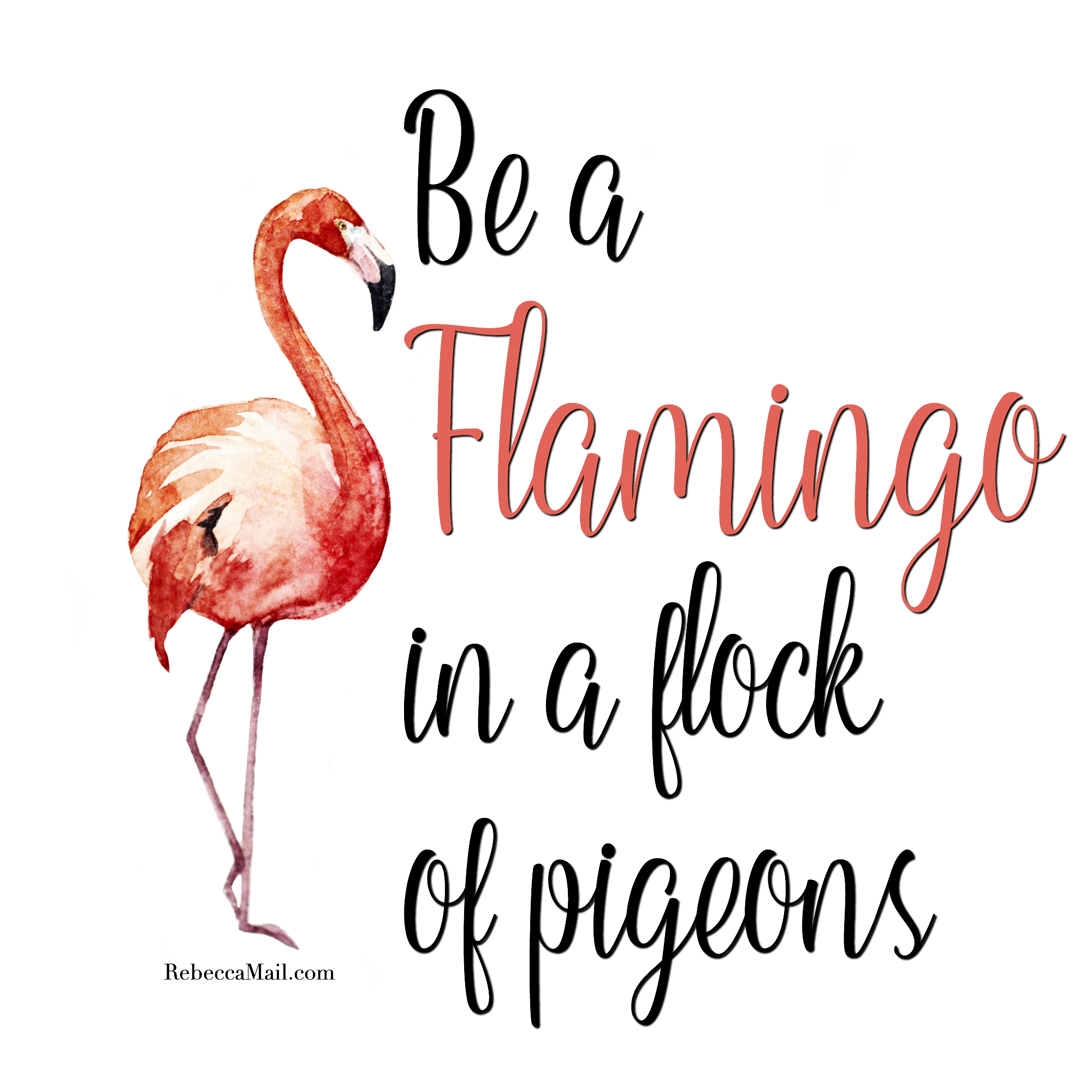 Be a in quotes. Flock of pigeons and one flamingo clipart
