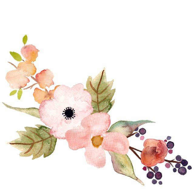 Beautiful hand painted floral. Floran clipart